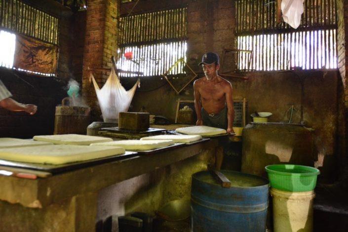 tofu factory